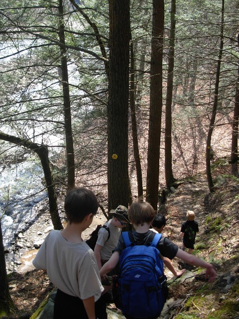 Hiking in Worlds End State Park
